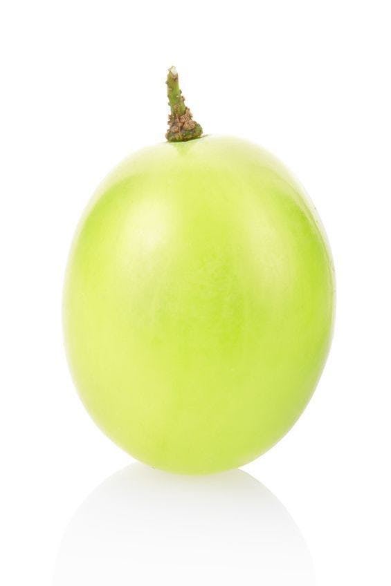 green grape berry isolated on white