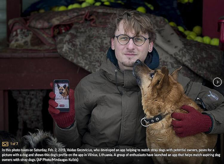 man playing with his dog and showing the dog's profile on the app