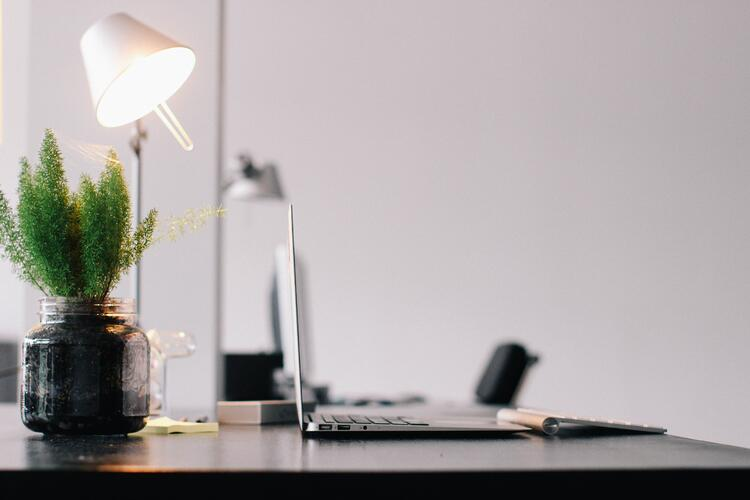 Office décor with a laptop, bright lamp and plant, as a concept of rapid prototyping