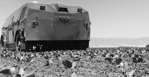 tank on a plantation bw